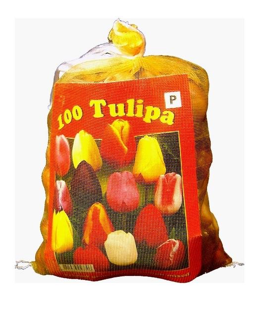 achat tulipes triumph en m lange xl emballage en ligne pas cher. Black Bedroom Furniture Sets. Home Design Ideas