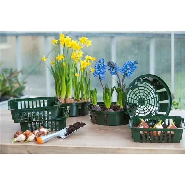 achat plante panier des bulbes 26 cm nature en ligne pas cher. Black Bedroom Furniture Sets. Home Design Ideas