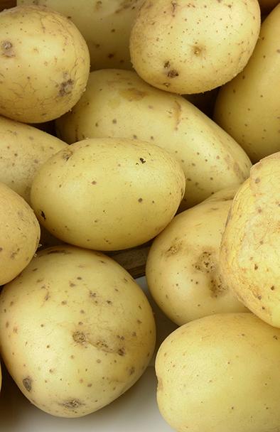 achat pommes de terre de pot bintje 1 kg en ligne pas cher. Black Bedroom Furniture Sets. Home Design Ideas