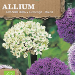 Allium Goliath Melange Biologique