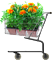 bulbes fleurs acheter vos bulbes pas cher ici. Black Bedroom Furniture Sets. Home Design Ideas